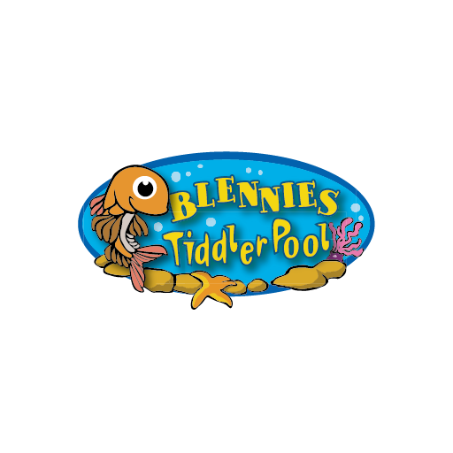 Blennies Tiddler Pool